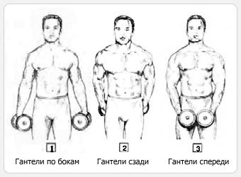 Подъемы гантелей в стороны — начало упражнения